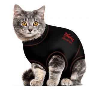 cat-suit-carousel-image-2