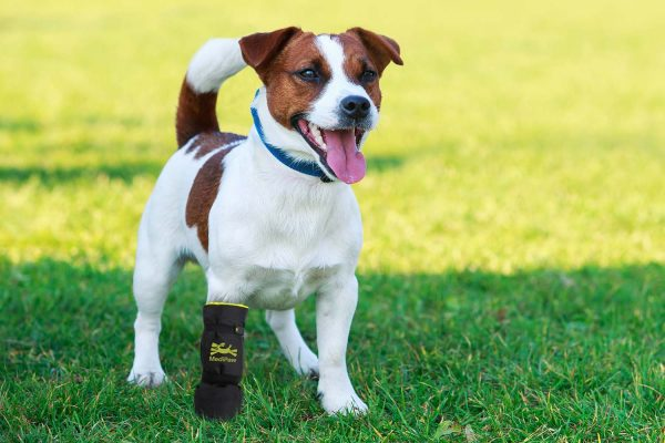soft-bandage-boot-dog-boot1