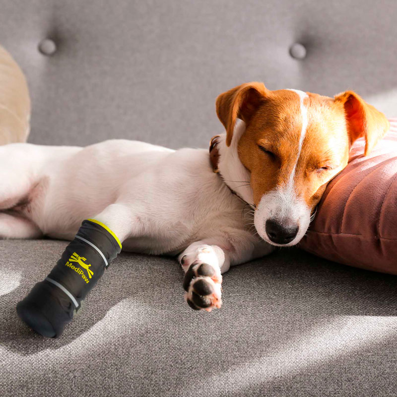 medipaw-consumer-dog-sleeping-couch-healing-boot-1