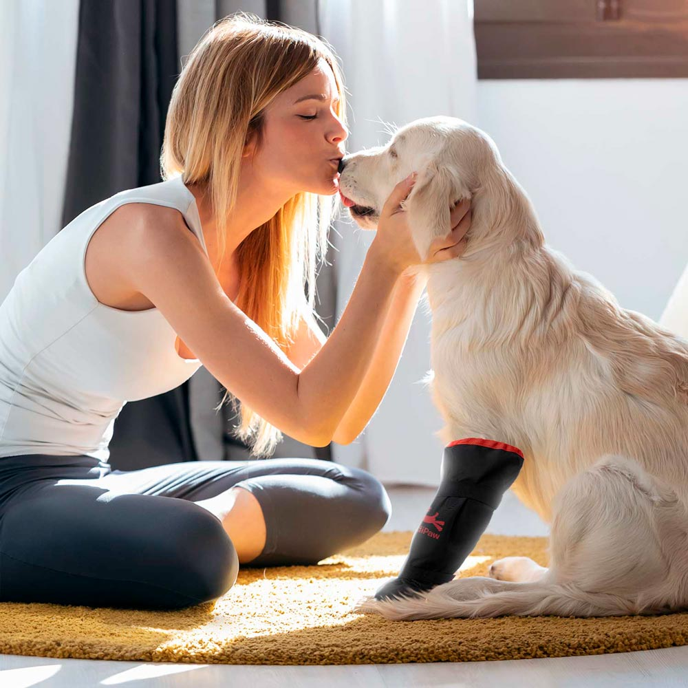 medipaw-consumer-feature-woman-dog-soft-bandage-boot-1.jpg